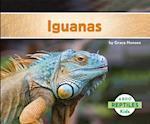 Iguanas af Grace Hansen