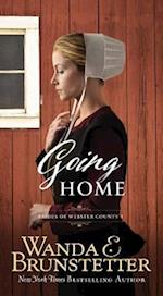 Going Home (Brides Of Webster County)