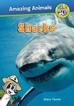 Sharks (Ranger Rick Amazing Animals)