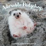 Adorable Hedgehogs Mini 2018