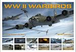 WW II Warbirds 2018 Calendar