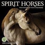 Spirit Horses 2018 Calendar