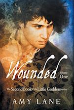 Wounded, Vol. 1 af Amy Lane