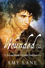 Wounded, Vol. 1