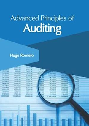 Advanced Principles of Auditing
