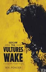 Before the Vultures Wake: A Collection of Short Stories