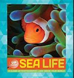 Sea Life af Heidi Fiedler