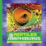 Reptiles & Amphibians af Heidi Fiedler