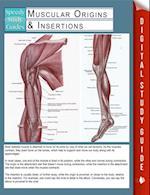 Muscular Origins & Insertions (Speedy Study Guides)