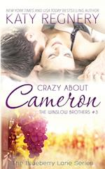 Crazy About Cameron (Blueberry Lane the Winslow Brothers)