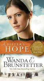 A Sister's Hope (Sisters of Holmes County, nr. 3)