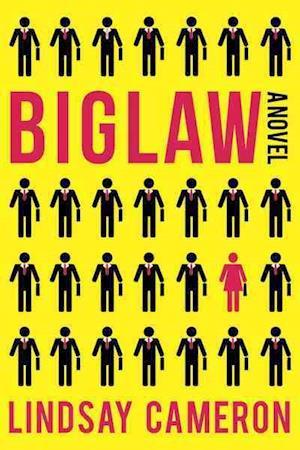 Bog, paperback Biglaw af Lindsay Cameron