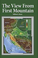 The View From First Mountain: A personal view of the Democracy Transition Program after the Croatian War of Independence af William G. Hanne
