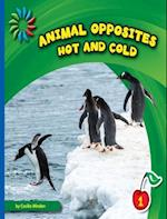 Hot and Cold (21st Century Basic Skills Library)