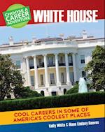 Choose Your Own Career Adventure at the White House (Bright Futures Press Choose Your Own Career Adventure)