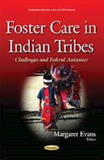 Foster Care in Indian Tribes af Margaret Evans