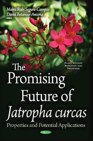 Bog, hardback Promising Future of Jatropha Curcas af David Betancur-Ancona