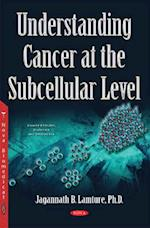 Understanding Cancer at the Subcellular Level (Cancer Etiology, Diagnosis and Treatments)