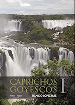 Caprichos Goyescos I af Ricardo López Ruiz