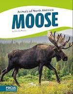 Moose af Christy Mihaly
