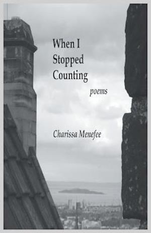 Bog, paperback When I Stopped Counting af Charissa Menefee