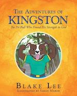 The Adventures of Kingston