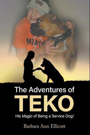 The Adventures of TEKO