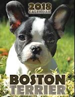 Boston Terrier 2018 Calendar
