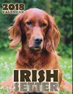 Irish Setter 2018 Calendar