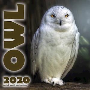 The Owl 2020 Mini Wall Calendar