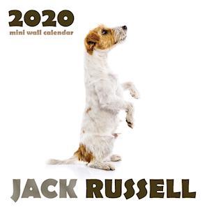 Jack Russell 2020 Mini Wall Calendar