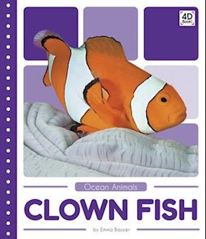Clown Fish