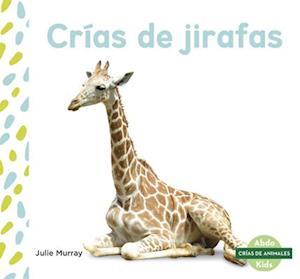 Crias de jirafas (Giraffe Calves)