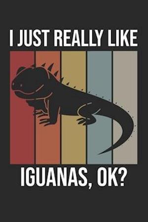 I Just Really Like Iguanas, OK?