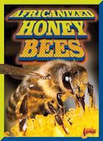 Africanized Honeybees (Invasive Species Takeover)