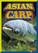 Asian Carp (Invasive Species Takeover)