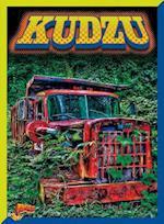 Kudzu (Invasive Species Takeover)