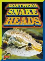 Northern Snake Heads (Invasive Species Takeover)