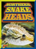 Northern Snakeheads (Invasive Species Takeover)
