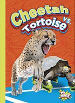 Cheetah vs. Tortoise (Versus)