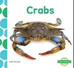 Crabs (I Like Animals)