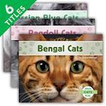 Cats Set 2 (Set) (Cats Set 2)