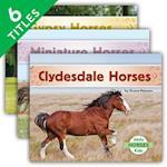 Horses (Set) (Horses)