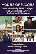 Models of Success (Contemporary Perspectives in Race and Ethnic Relations)