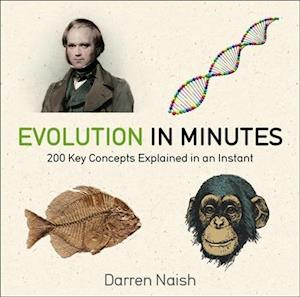 Evolution in Minutes