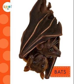 Bog, hardback Bats af Wendy Strobel Dieker