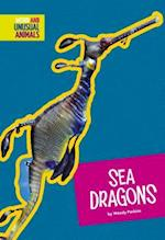Sea Dragons (Weird and Unusual Animals)