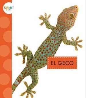 Bog, hardback El Geco / Geckos af Rachel Bach