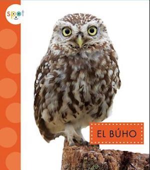 Bog, hardback El Búho / Owls af Wendy Strobel Dieker