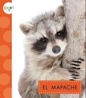 Bog, hardback El Mapache / Raccoons af Marysa Storm